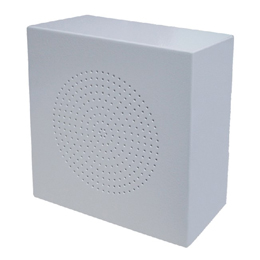 Metal Wall Mounted Speaker